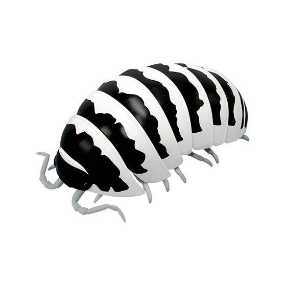 バンダイ 生き物カプセル だんごむし03 フチゾリネッタイコシビロダンゴムシ編 ゼブラだんごむし