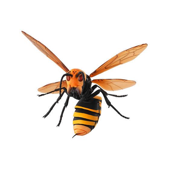 バンダイ 生き物カプセル すずめばち オオスズメバチ
