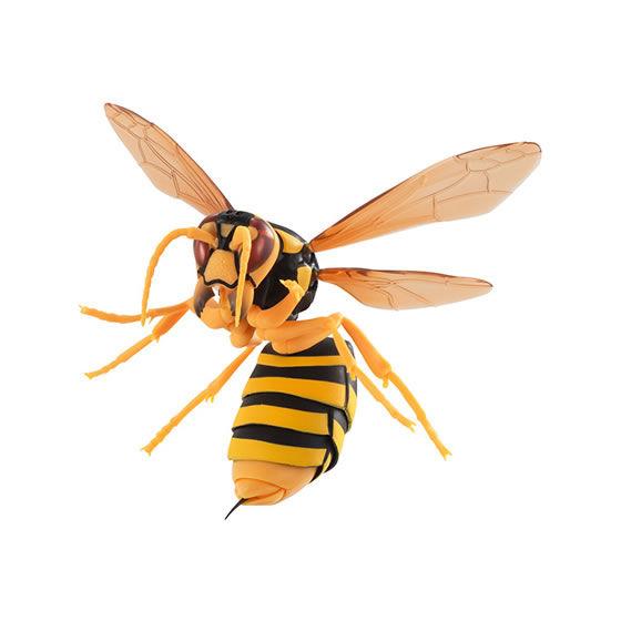 バンダイ 生き物カプセル すずめばち キイロスズメバチ