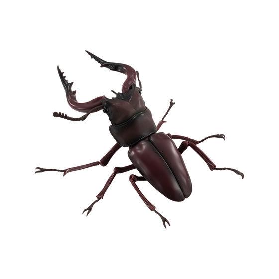 バンダイ 生き物カプセル くわがた ノコギリクワガタ(赤茶色)