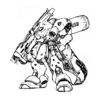 AMS-119F シュツルム・ドーガ