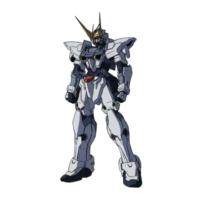 ZGMF-X12A テスタメントガンダム [Testament Gundam]