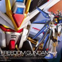 RG 1/144 ZGMF-X20A ストライクフリーダムガンダム [Strike Freedom Gundam] パッケージ