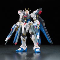 RG 1/144 ZGMF-X20A ストライクフリーダムガンダム [Strike Freedom Gundam] 0185139 4543112851390 5061617