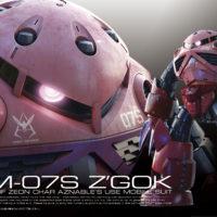 RG 1/144 MSM-07S シャア専用ズゴック [Char's Z'Gok] パッケージ